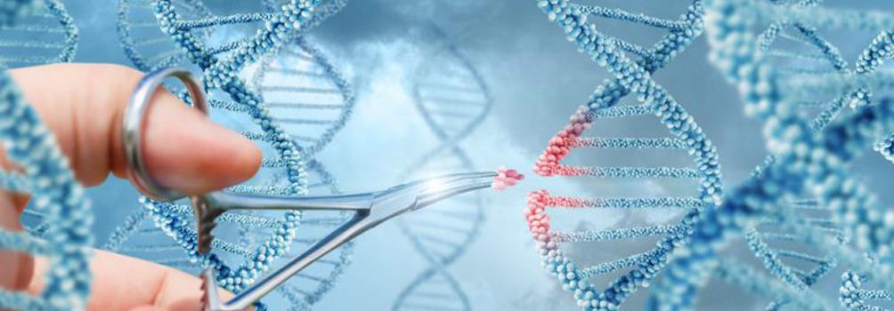 BIT's 12th World Congress of Regenerative Medicine & Stem Cell (RMSC